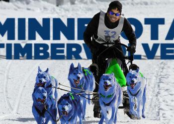 minnesota timberwolves preview